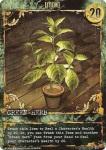 it-001_premier_green_herb